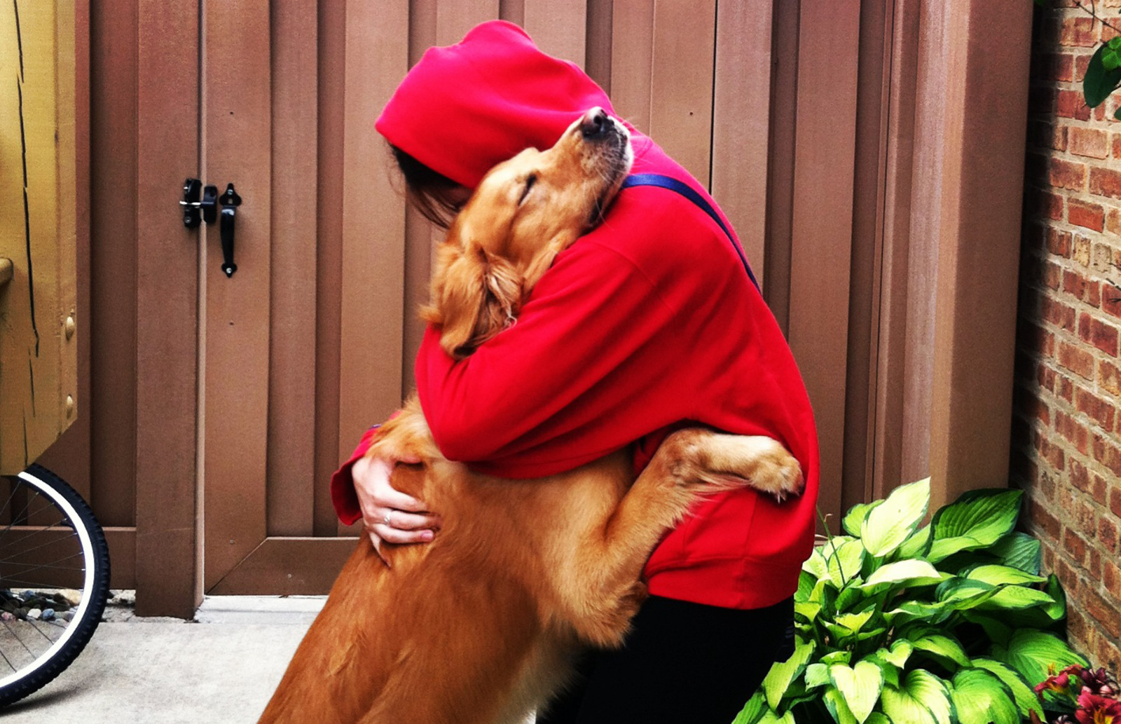 These Epic Dog-Human Hugs That Will Make You Want to go Smoosh Your Pup!