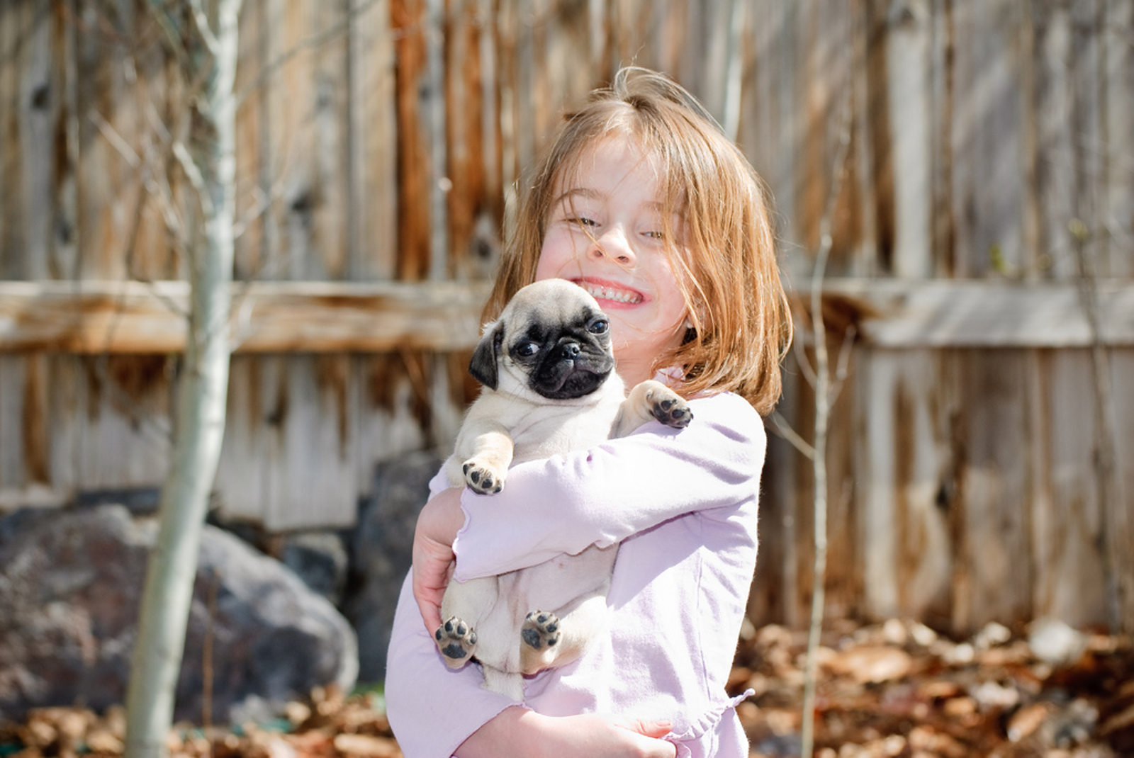 11 Ways Having a Dog is Like Having a Kid
