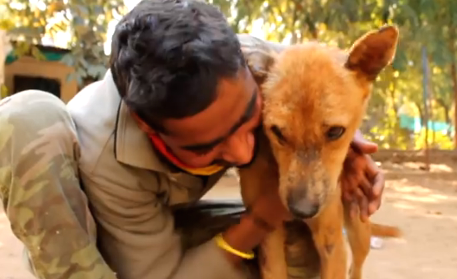Amazing Rescue Of Dog Stuck In A Wire Gate Video One