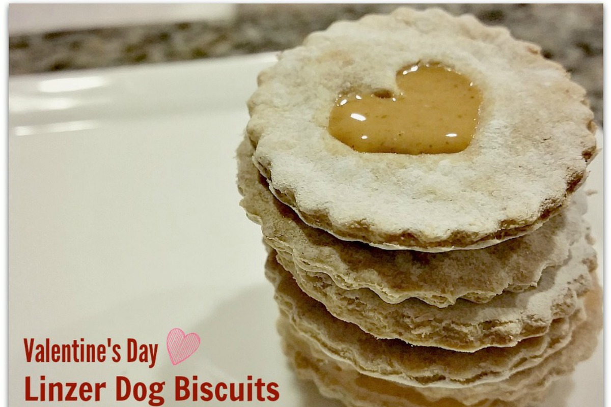 Heart-Shaped Linzer Dog Biscuits For Valentine's Day [Vegan]