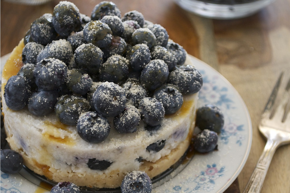 Blueberry Coconut Cake [Vegan