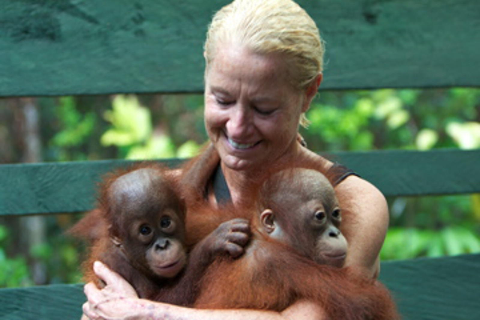 Call for Conservation: What I Learned From Visiting Borneo's Orangutans