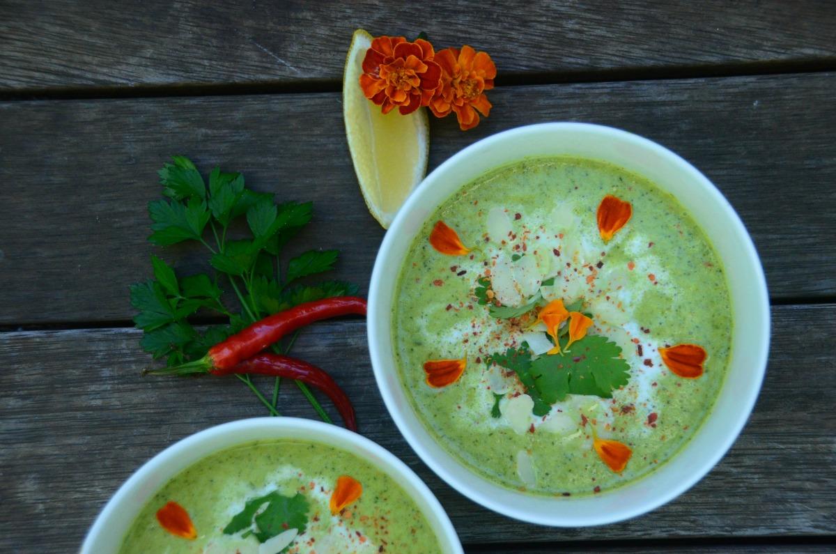 Broccoli and Coconut Soup [Vegan, Gluten-Free]
