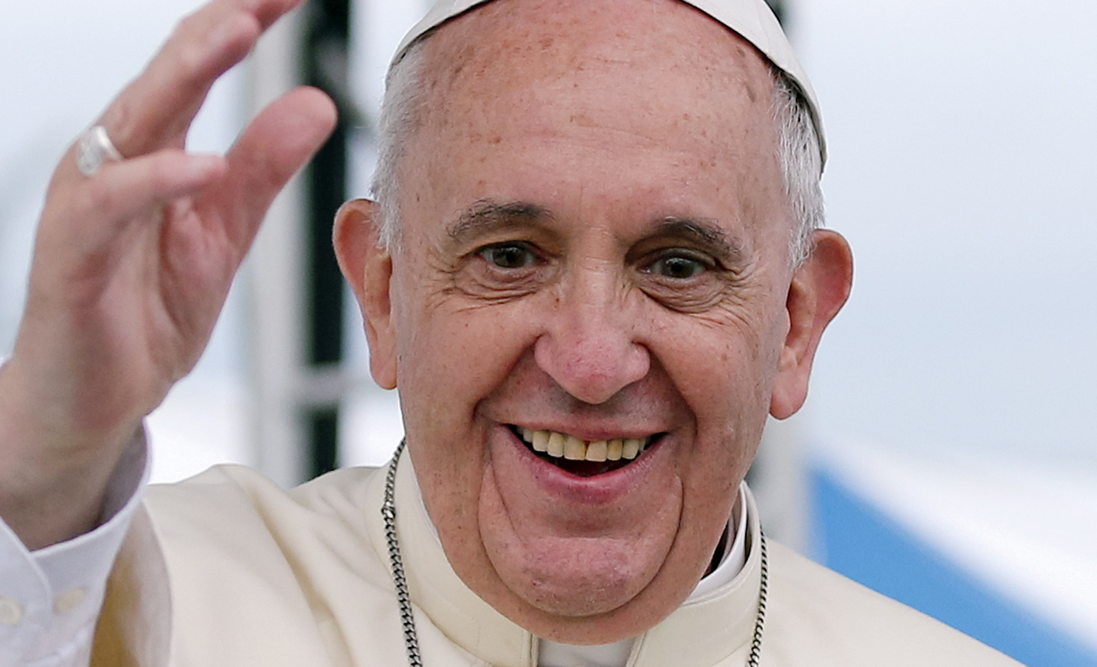 Pope Francis On How Compassion for Animals Can Help the Environment