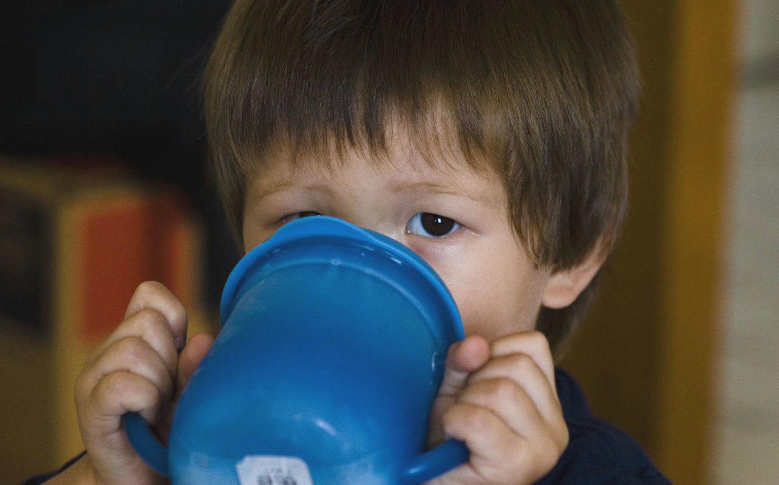 4 Reasons Why BPA-Free Plastics Can Still Harm Your Health