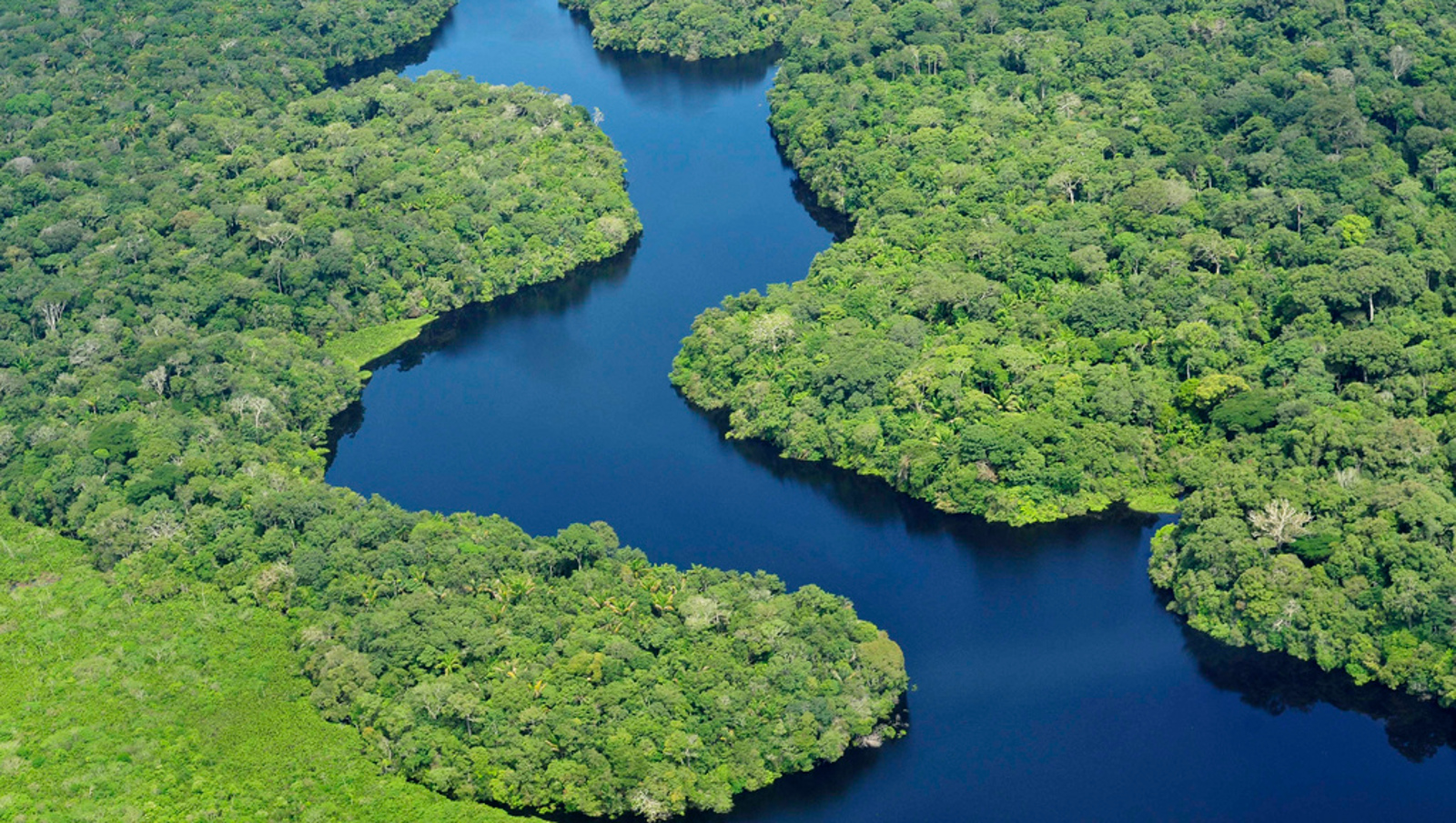 3 Ways Brazil's Environmental Decisions Affect the World
