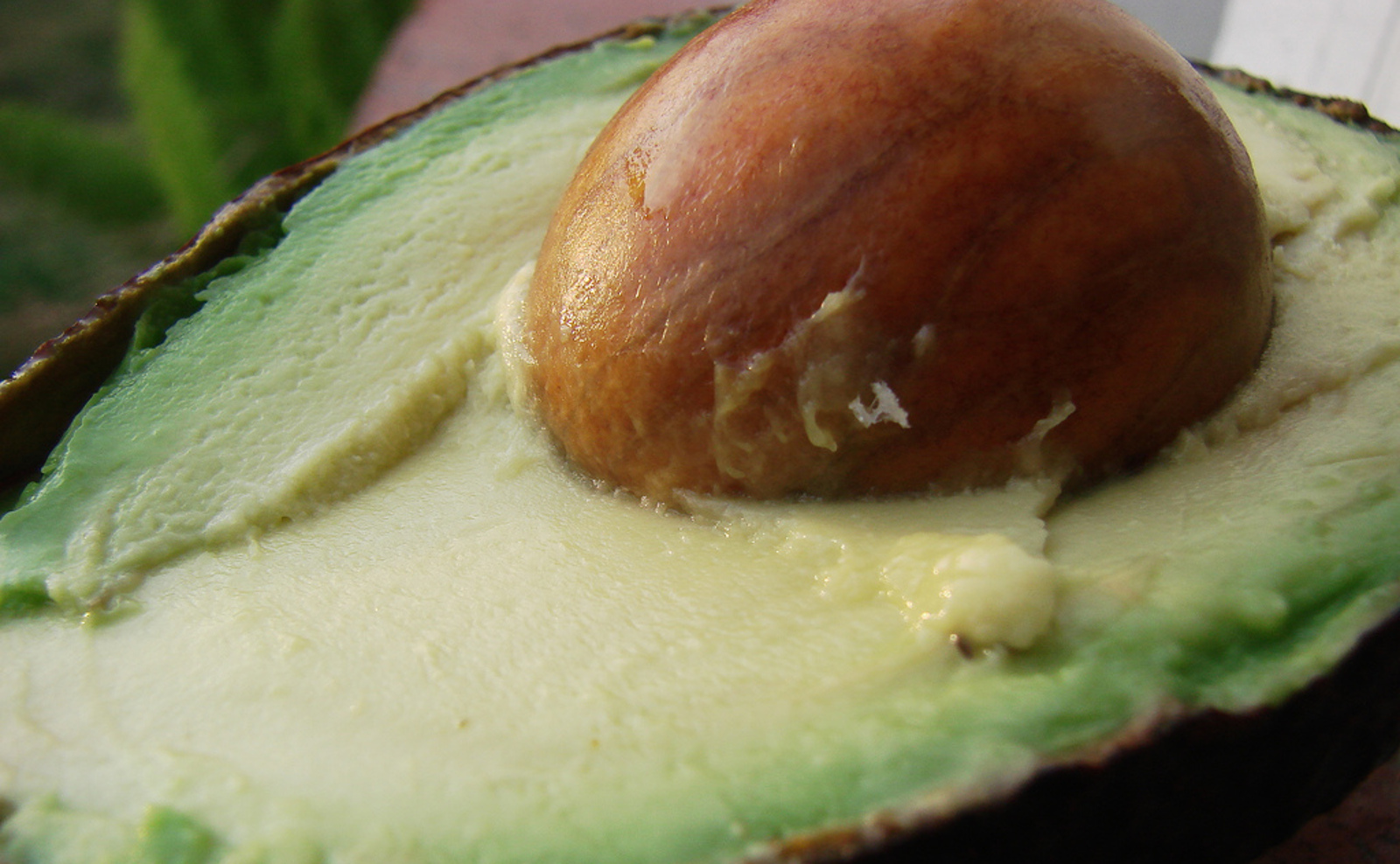 Why You Should Eat That Avocado Seed and How to Make it Tasty