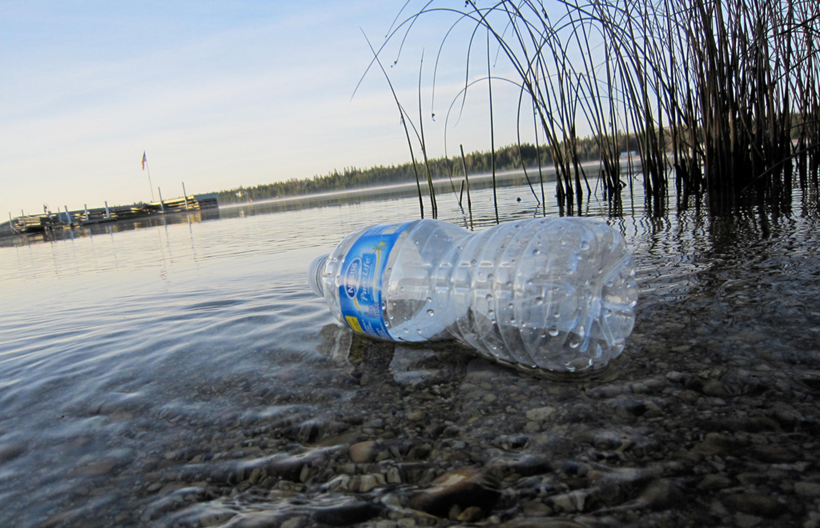 Where Plastic Really Goes When You Throw It Out: From Harming Marine Life, Back to People