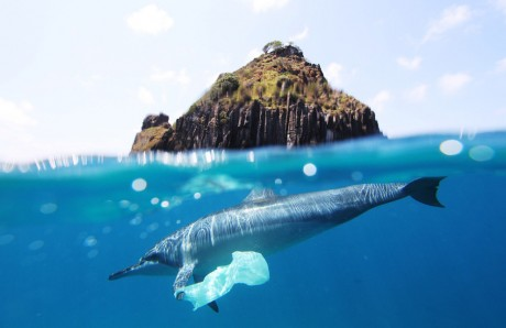 9 Simple Actions That Just Might Save Our World's Oceans from Plastic