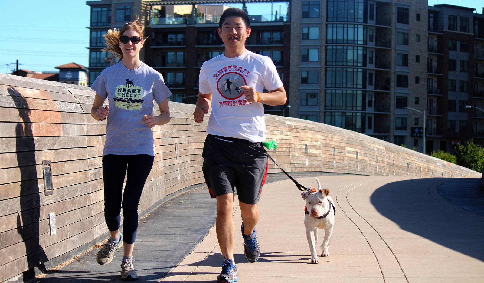 Running Group Saves Dogs by Taking Shelter Pets Along for a Jog