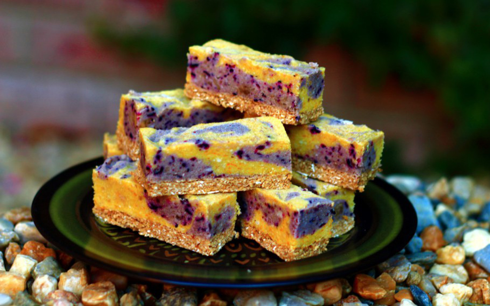 Frozen Blueberry Lemon Bars