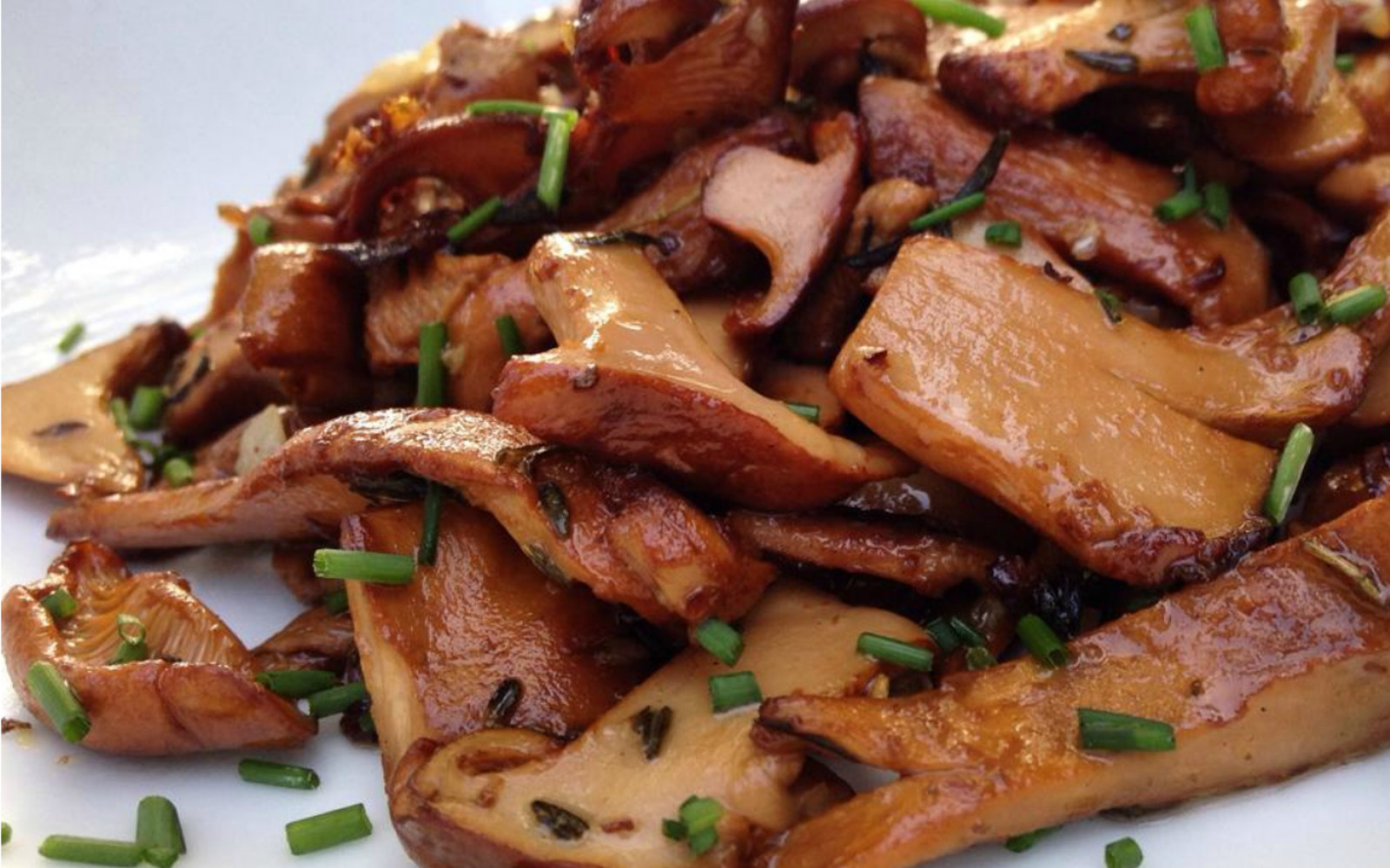 The Essential Guide to Cooking Mushrooms