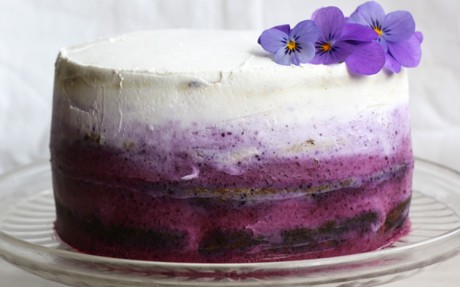 Blueberry Cake With Coconut Frosting