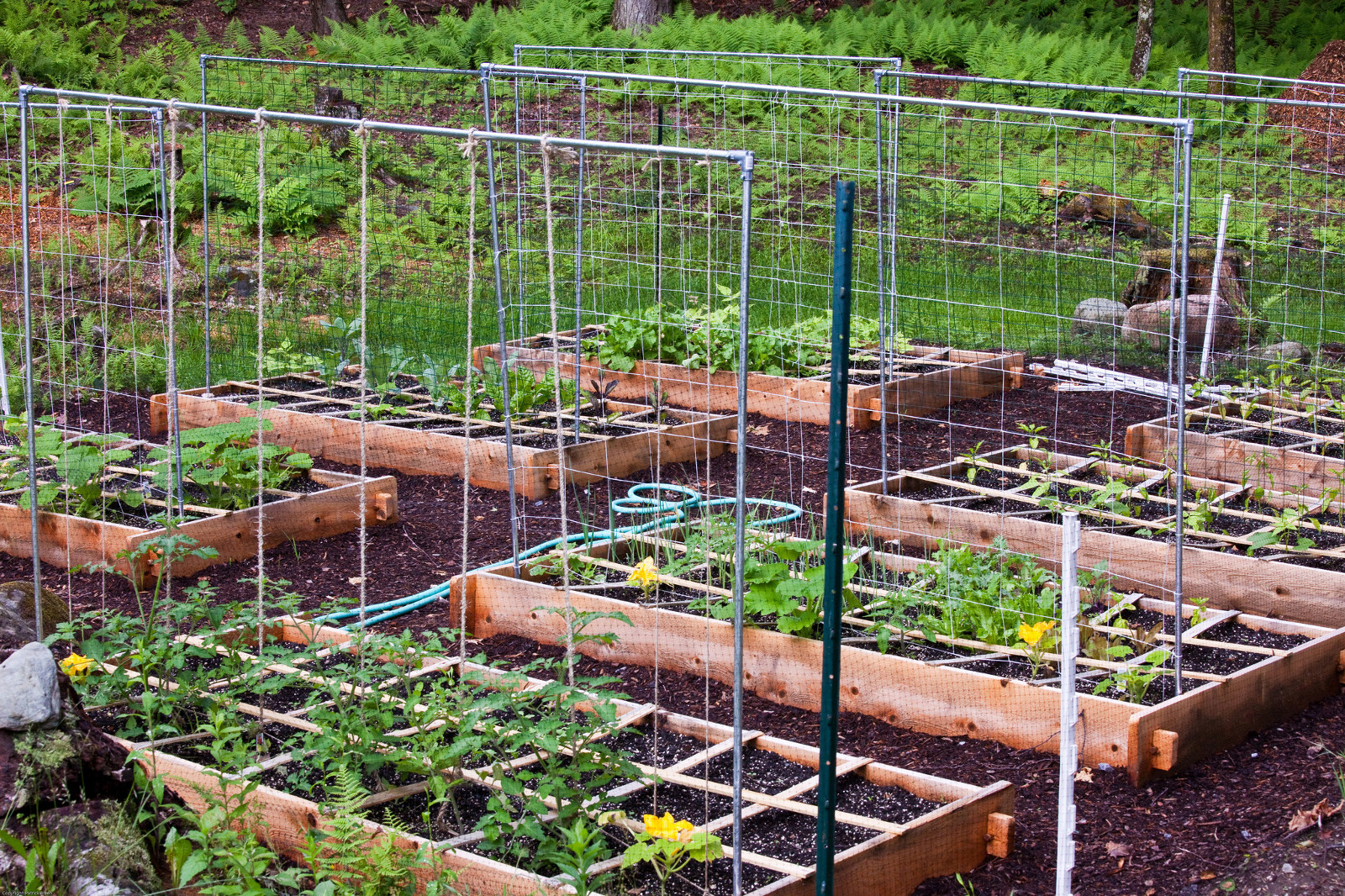 5 Methods for Making Raised Garden Beds