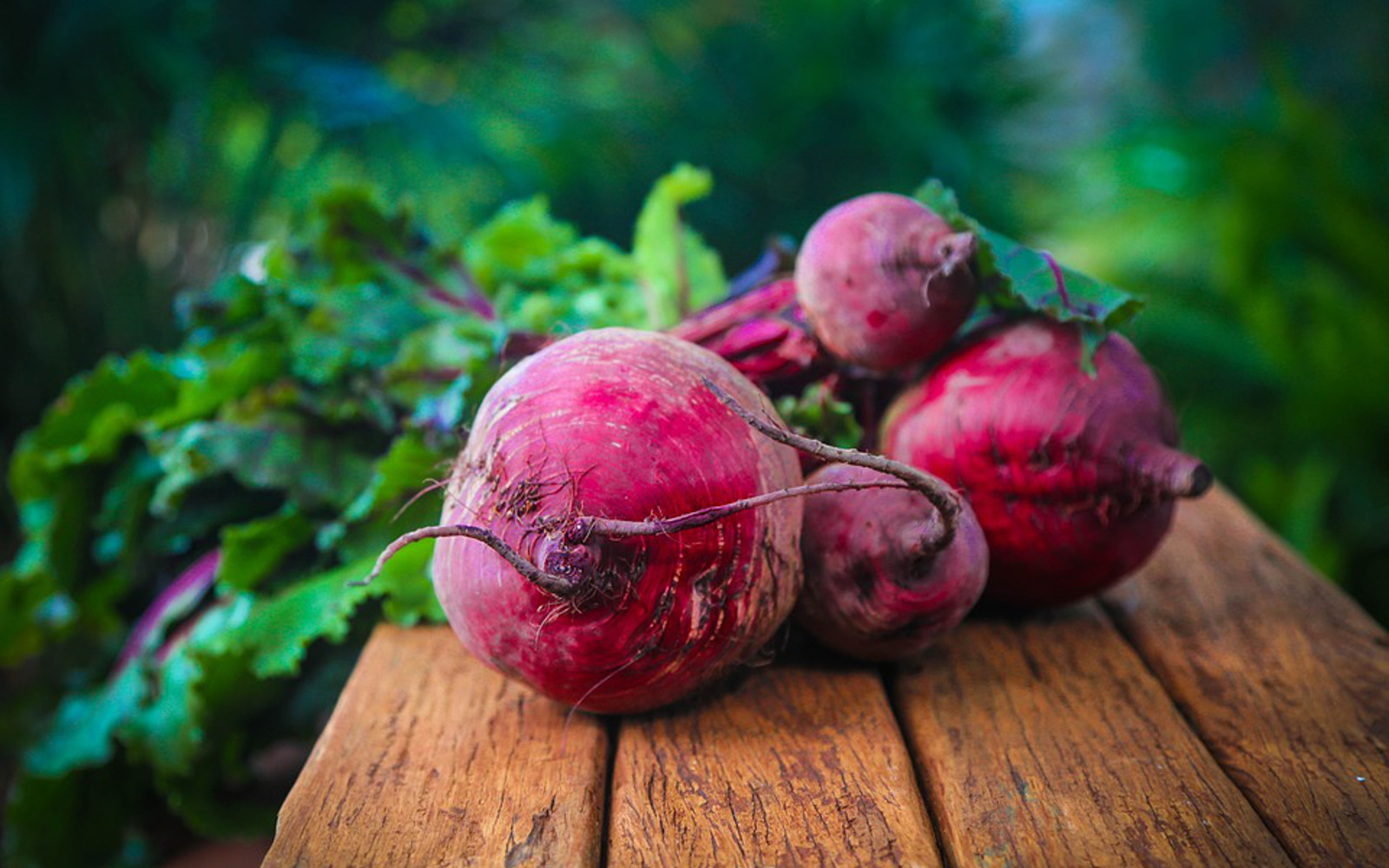 Beets Feature Image