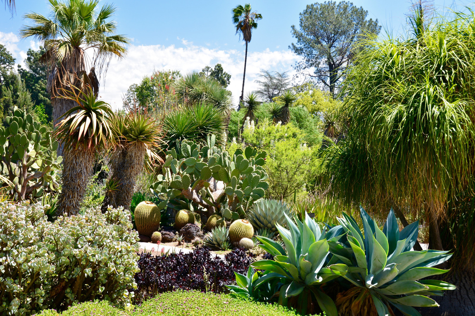 How To Create A Sunken Garden Bed When Raised Beds Don T Make Sense For Your Environment One Green Planet
