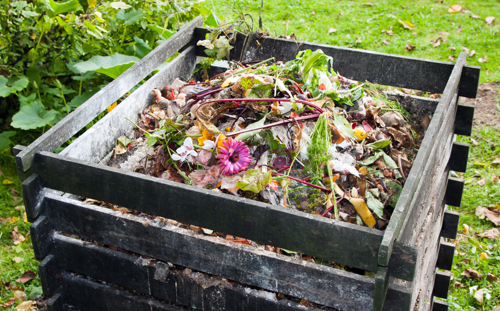 What to Do With All This Compost