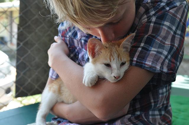kid hugging cat