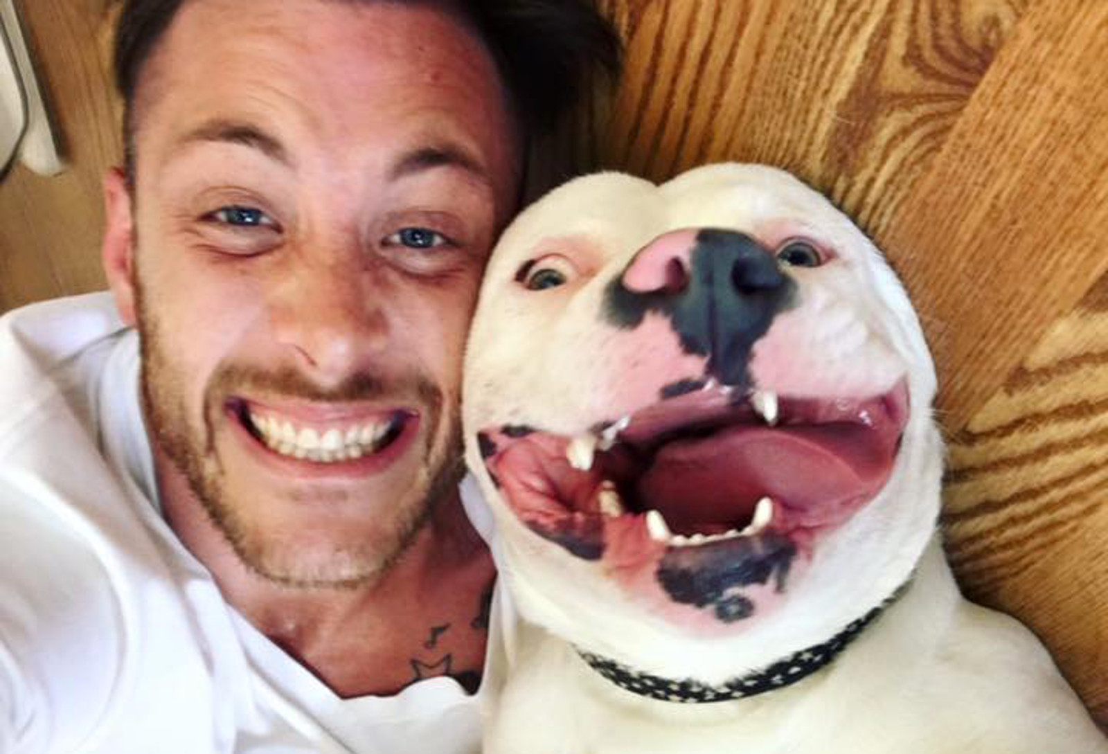 Let's Keep This Dog Smiling by Letting Him Stay With His Humans!!!