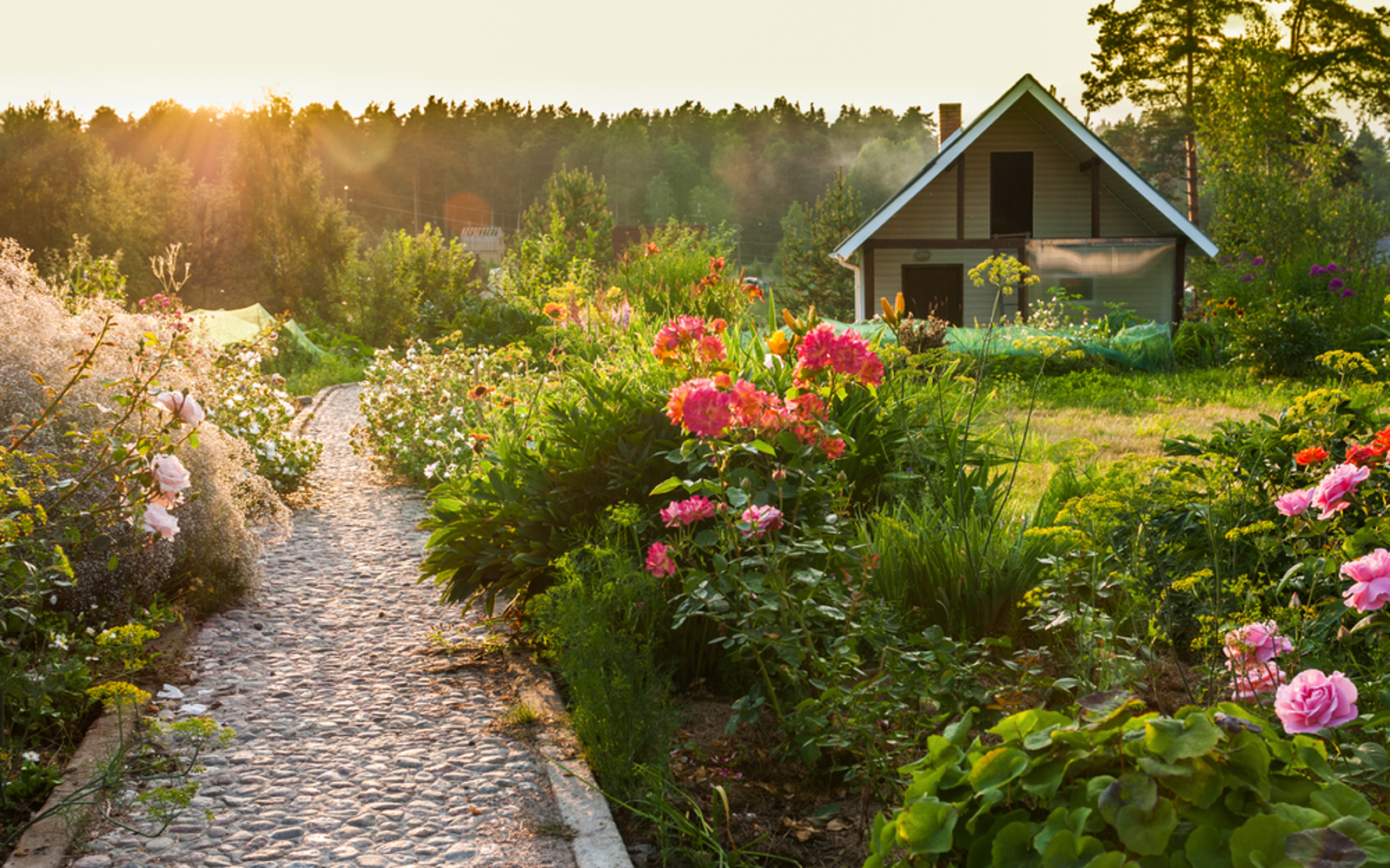 How to Make Your Permaculture Plant-Based