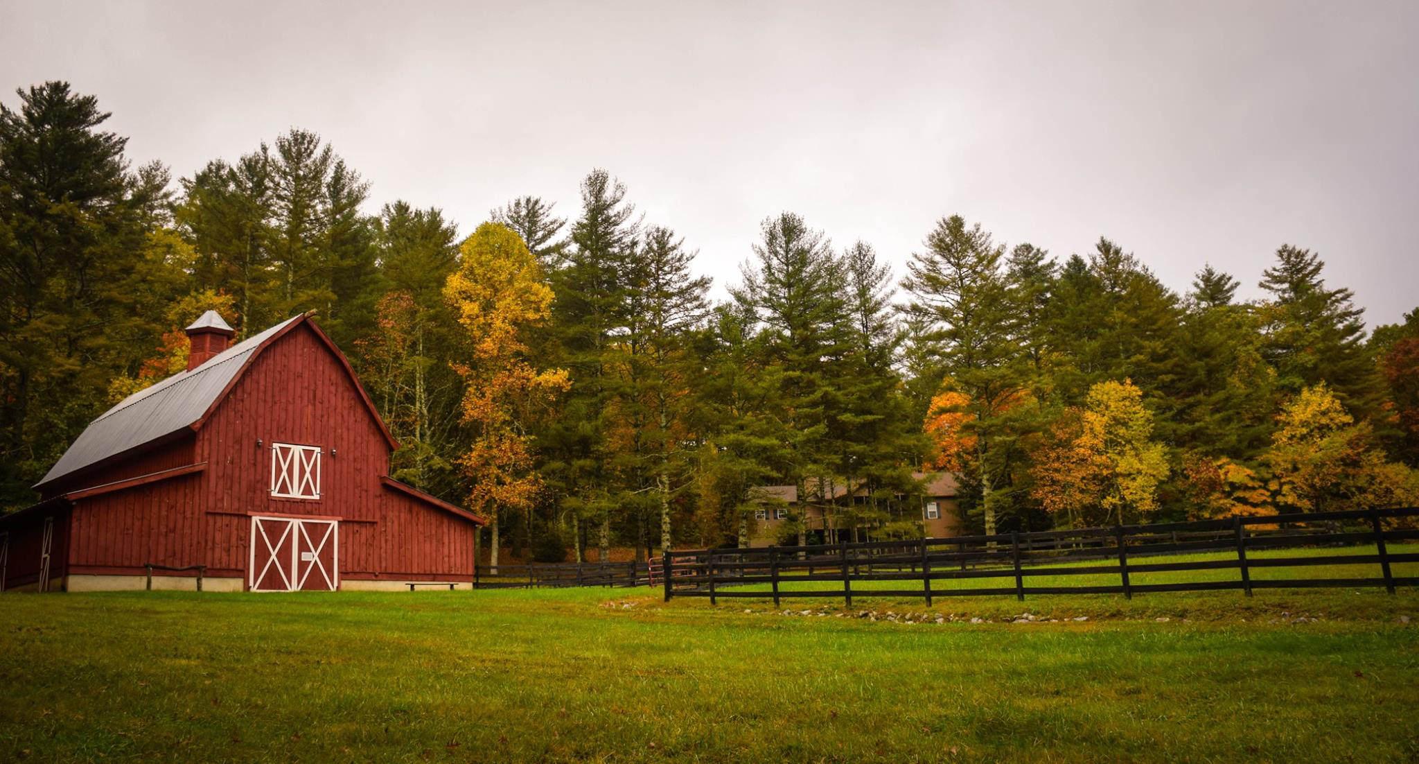 Displacing family farms_Frances Gunn_Tyson8