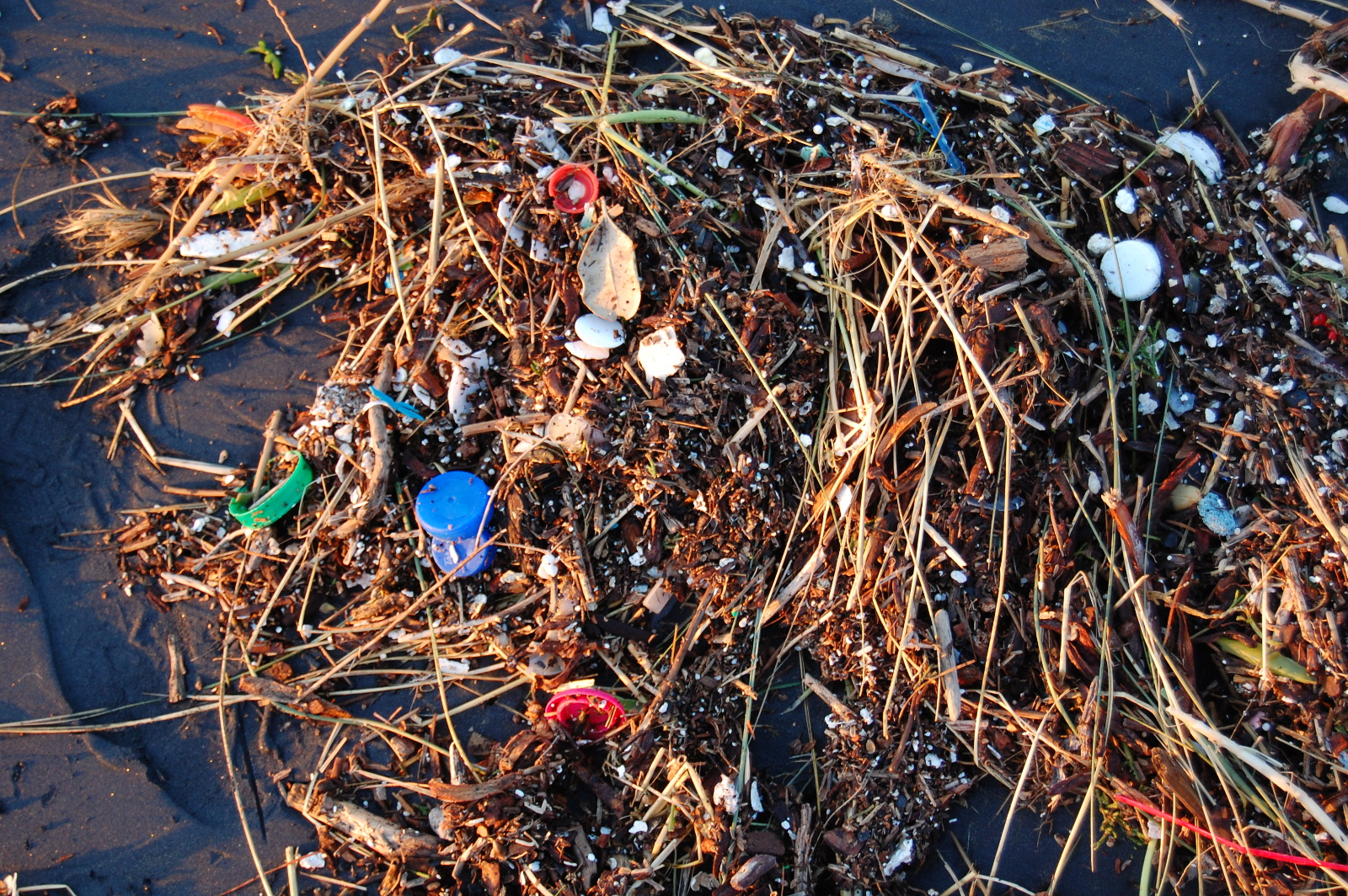 Why You May be Sending Plastic into the Oceans Without Realizing It