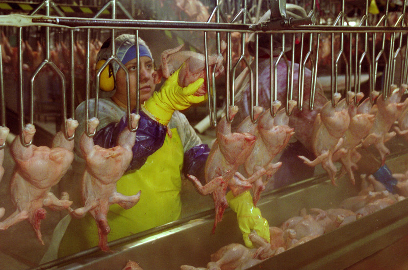 Woman on Poultry Processing Line_EarlDotter_Tyson6