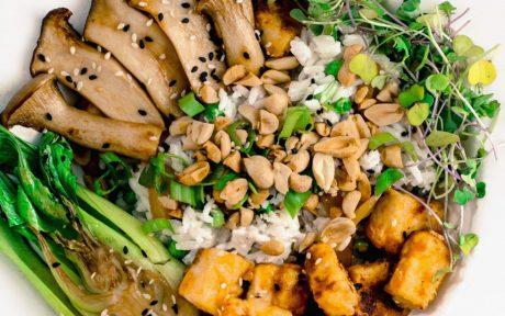 Crispy Peanut Tofu and Oyster Mushrooms With Coconut Rice