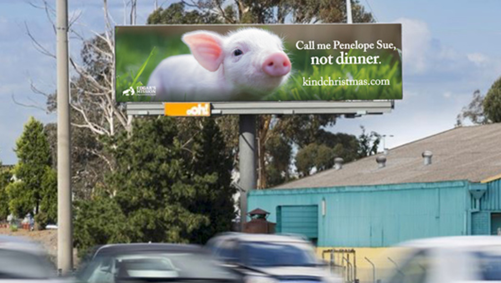 6 Inspiring Advertising Campaigns That Challenged People to See Farm Animals Differently