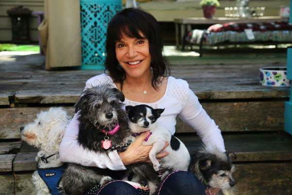 3 Organizations Working to Help Senior Pets Find Adoptive Homes