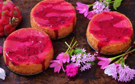 Dragon Fruit Cheesecake With Coconut Oat Crust c