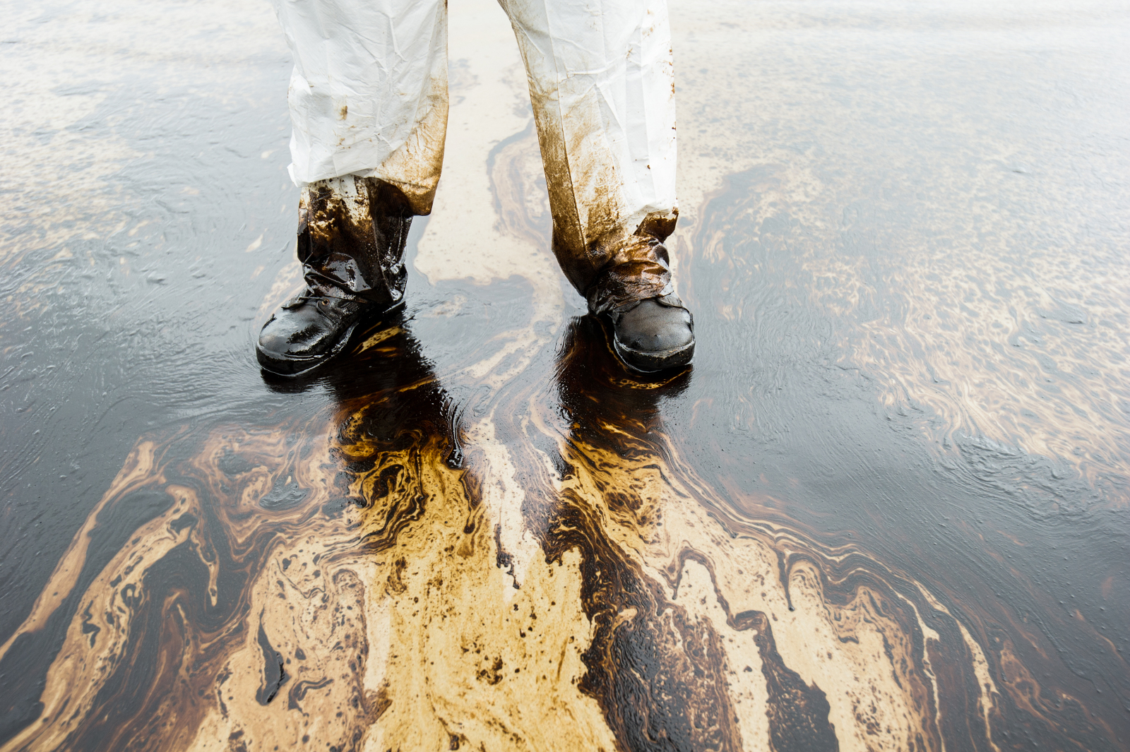 3 Times Pipeline Ruptures Damaged the Environment and How You Can Keep This from Happening Again