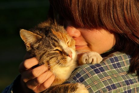 6 Tips for Helping Pets Adjust to Their New Home