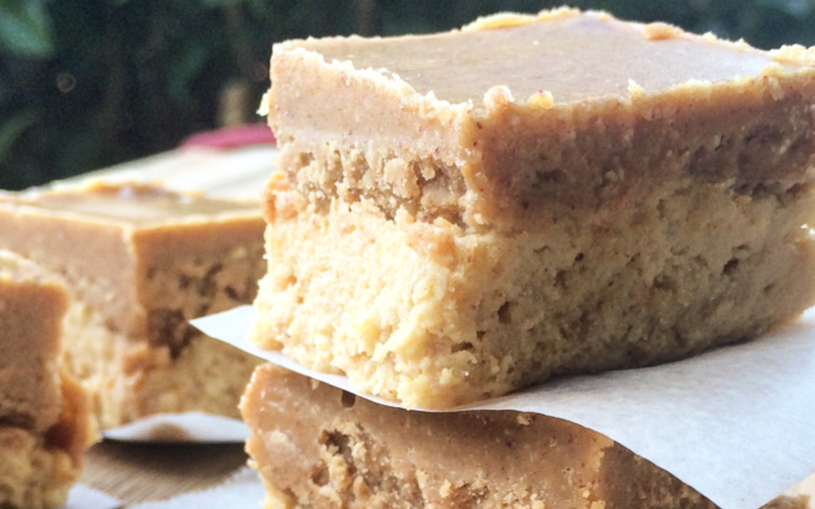 Double Peanut Butter Protein Fudge