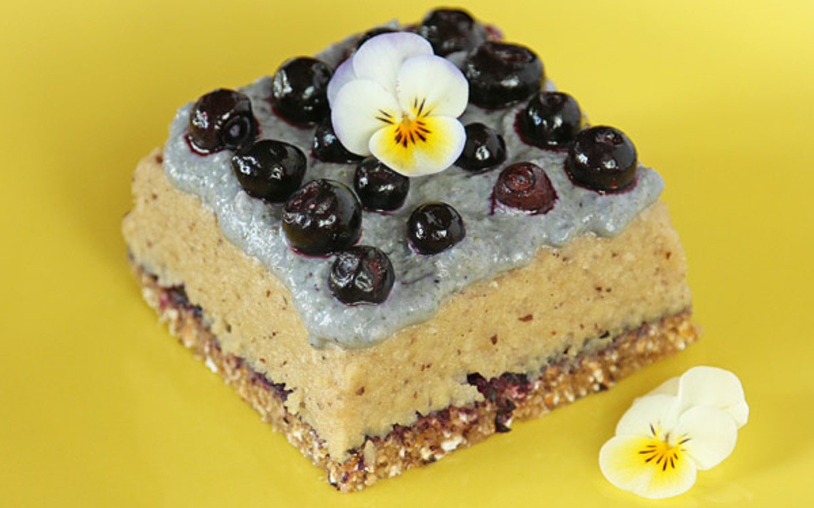 Cashew, Almond, and Blueberry Raw Food Cake