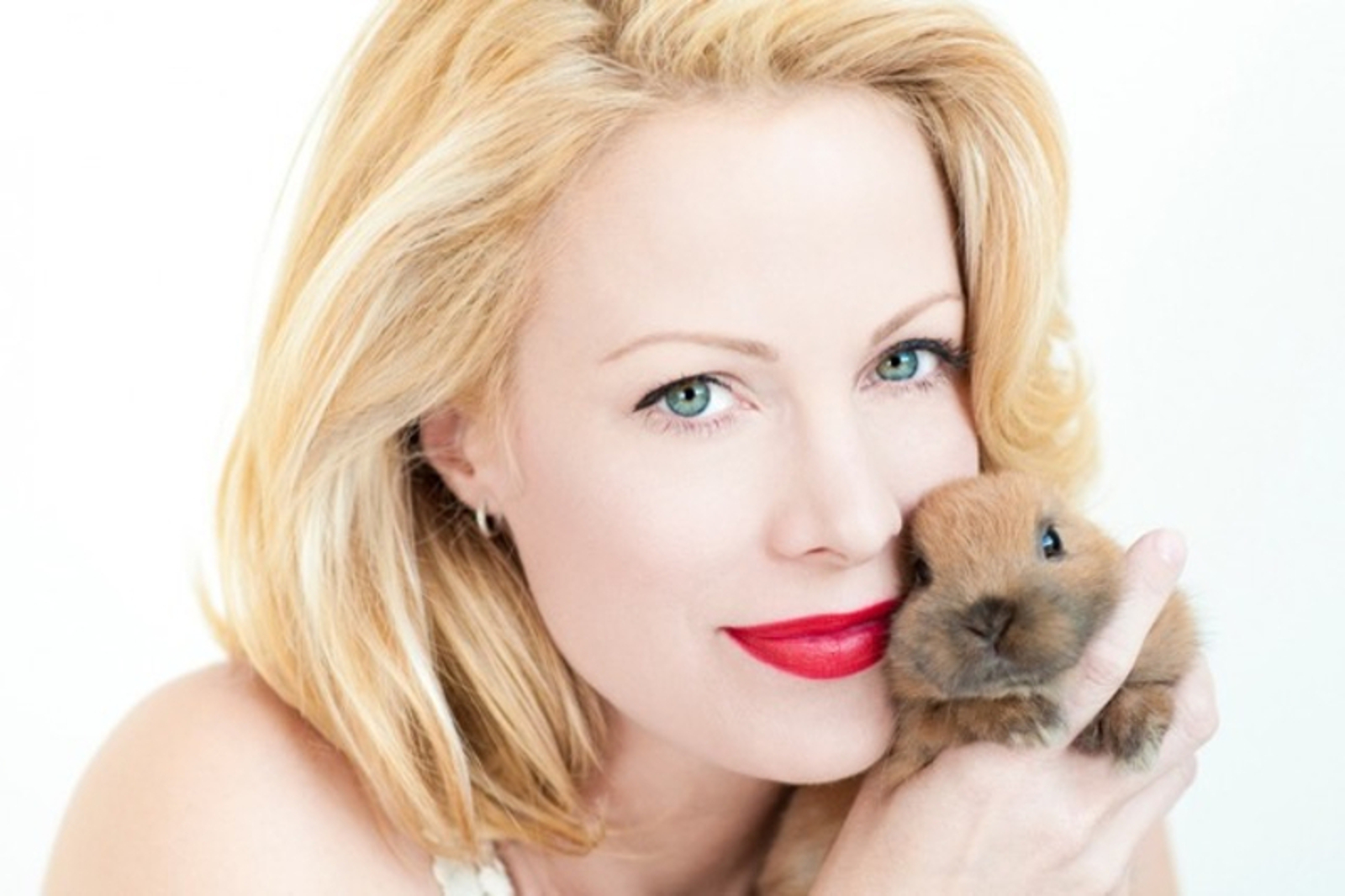 This Amazing New Animal Foster Database Headed by Alison Eastwood Could Help End Pet Homelessness!