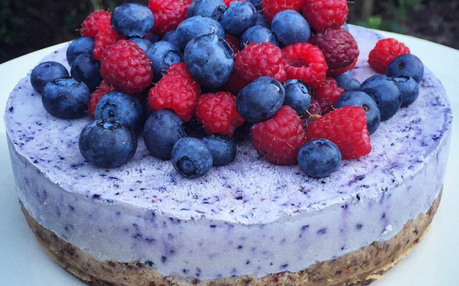 Protein-Packed Blueberry Cheesecake