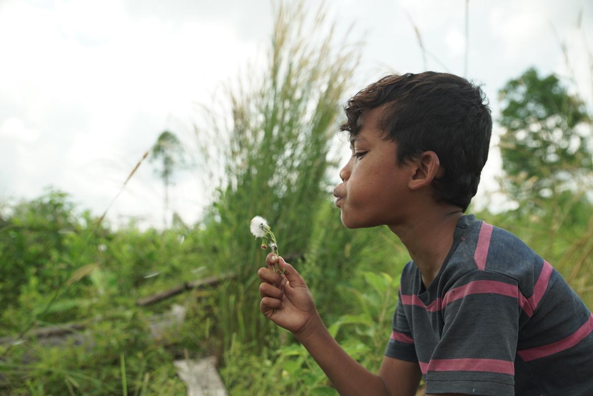 Kid w dandelion 1200px