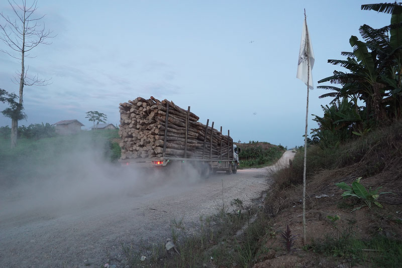 LoggingTruck