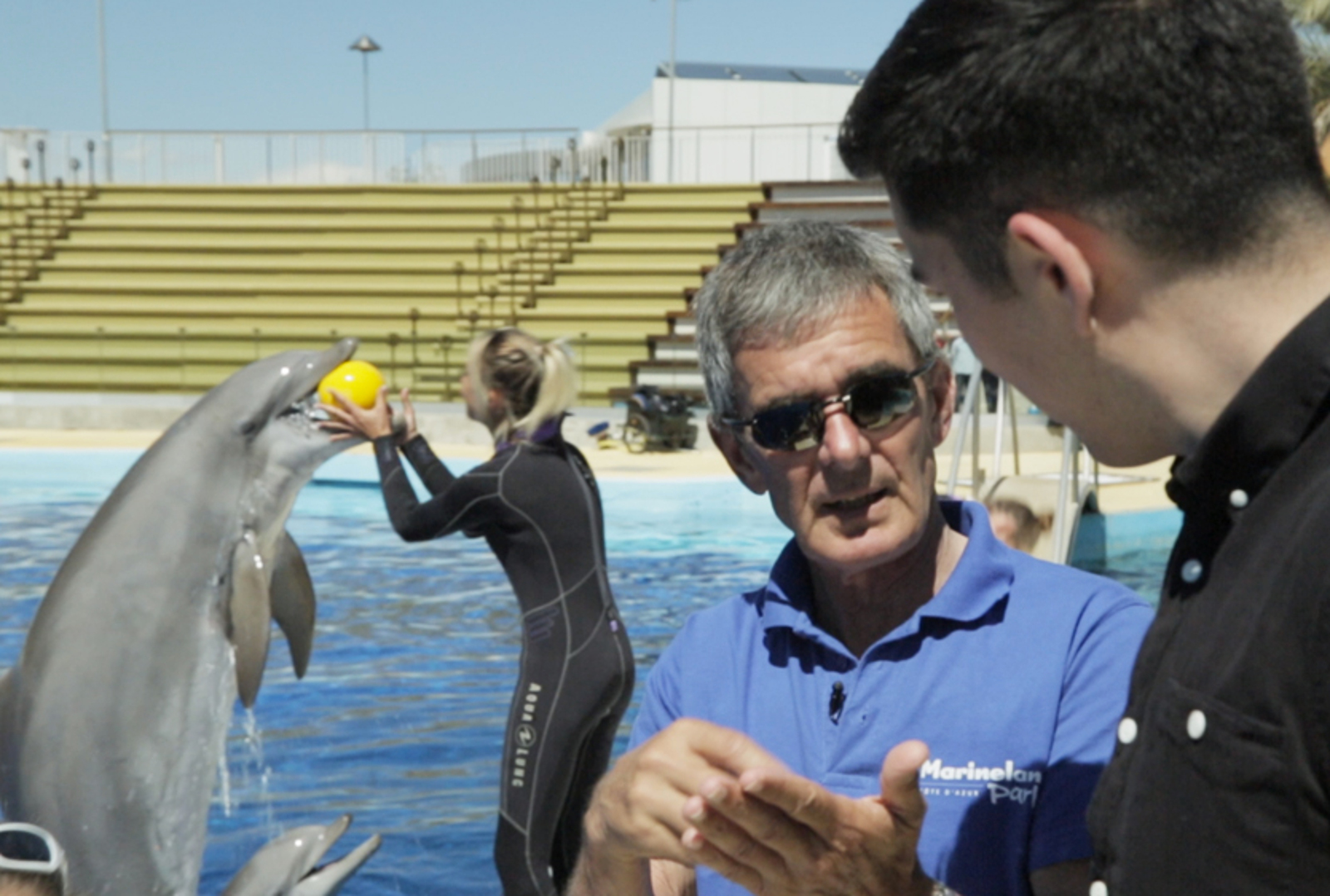 New Documentary Reveals the Lives of Orcas and Bottlenose Dolphins at Marineland Antibes