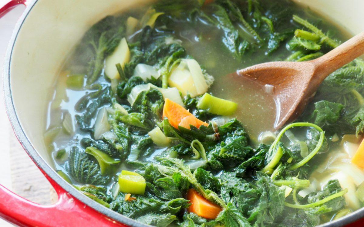 Foraged Nettle Soup [Vegan, Gluten-Free] - One Green Planet