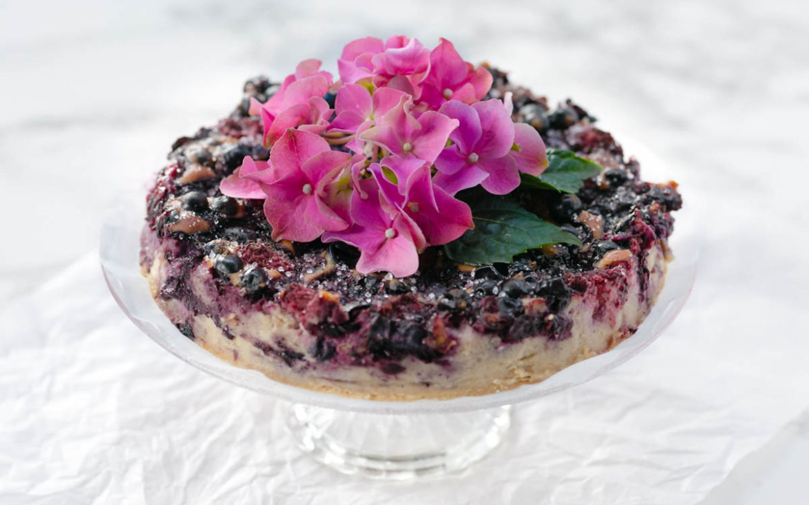 Baked Dessert Tofu With Black Currants, Raspberries, and Blueberries