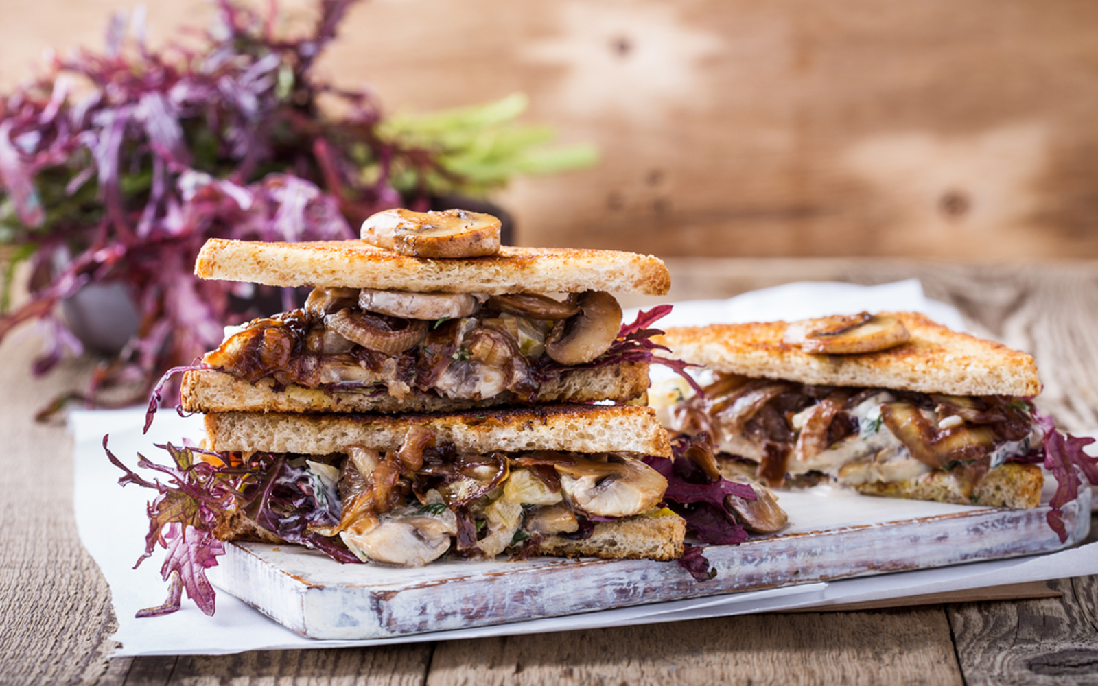 Vegan Fried panini with caramelized onions