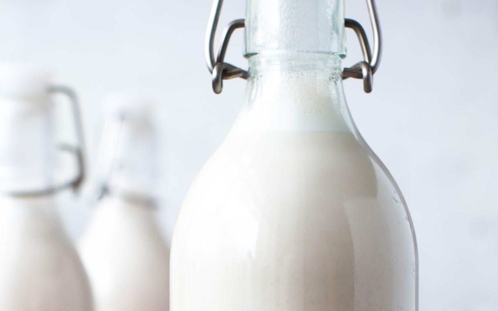 Vegan Cashew Milk