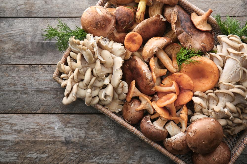 Mushroom varieties in a basket