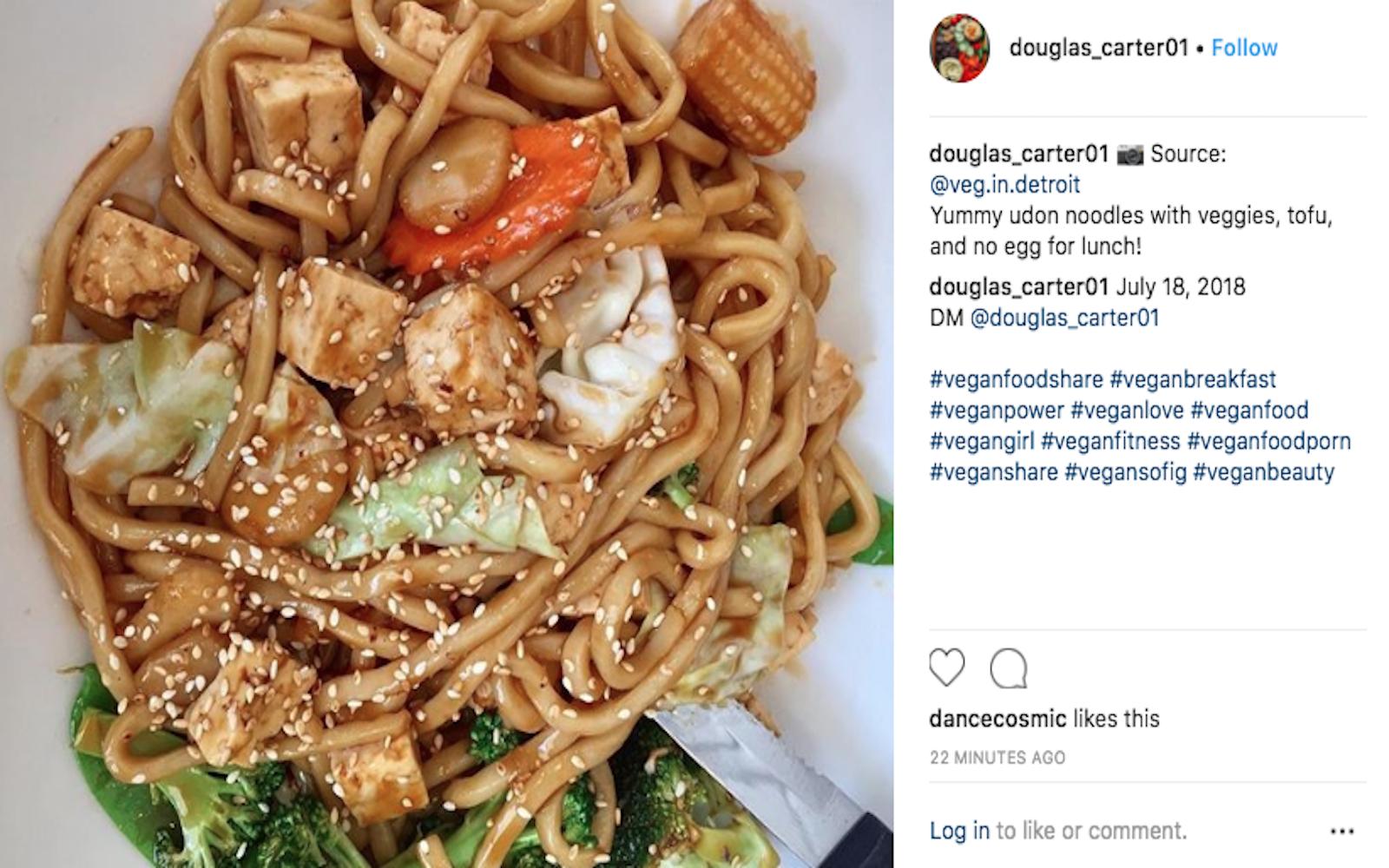 veggie-udon-noodles