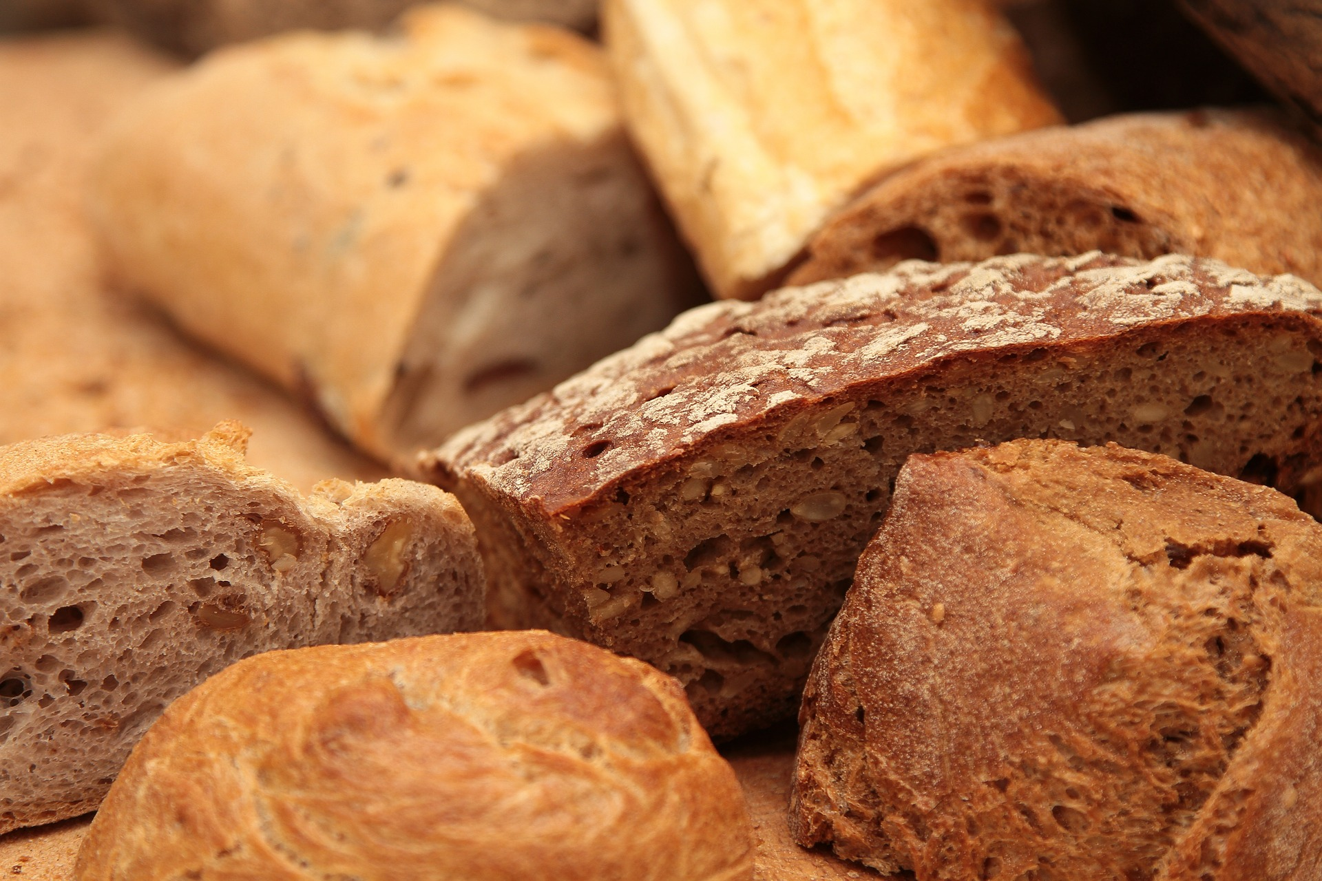 Pieces of loaves of bread