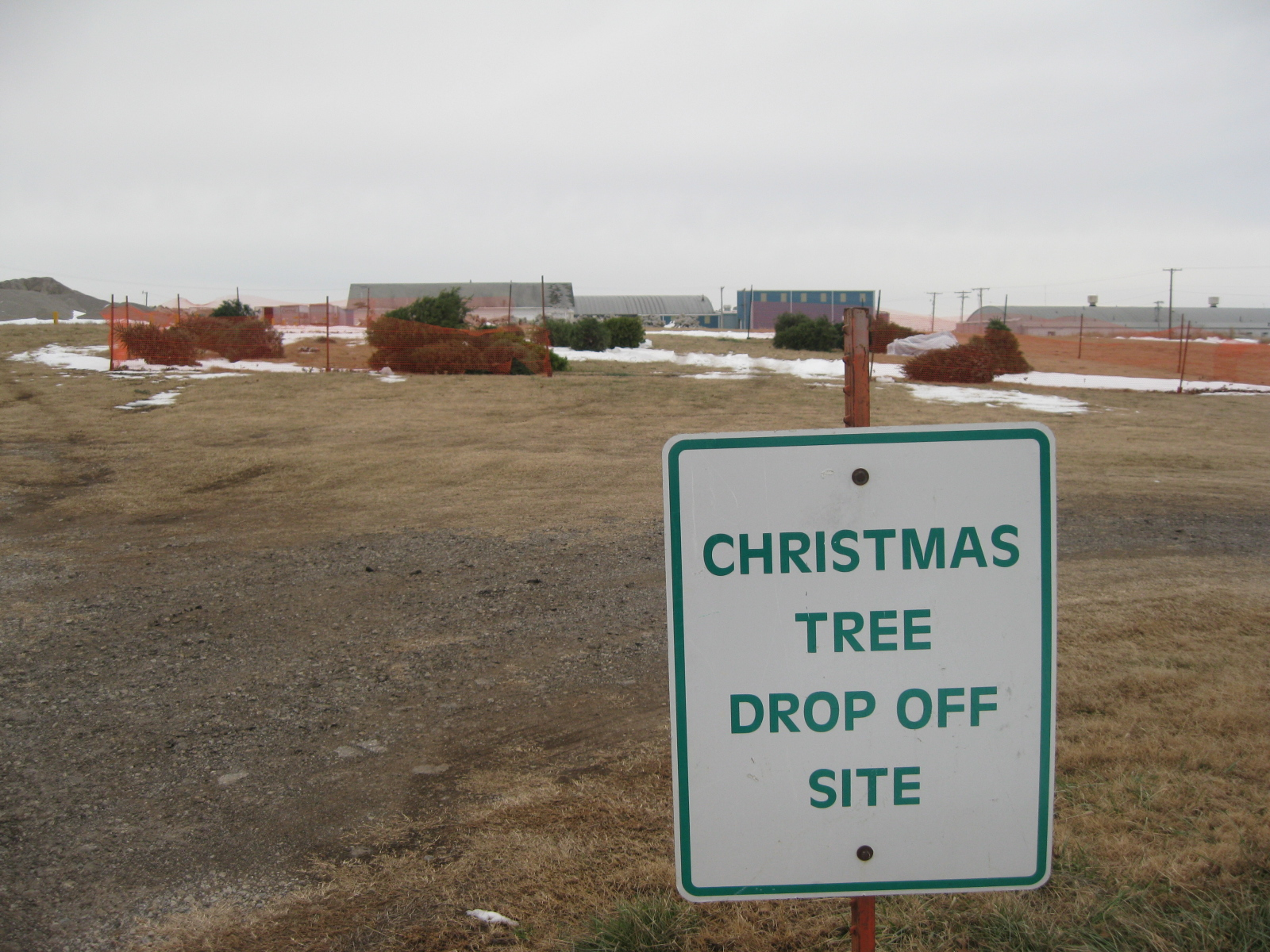 Christmas tree drop-off site