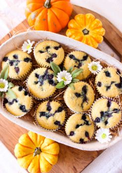 Blueberry Corn Muffins [Vegan]