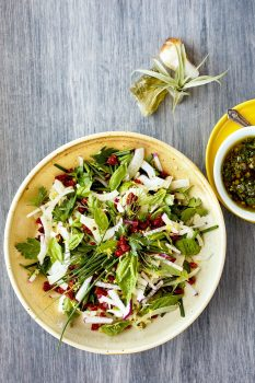 Fennel Herb Salad